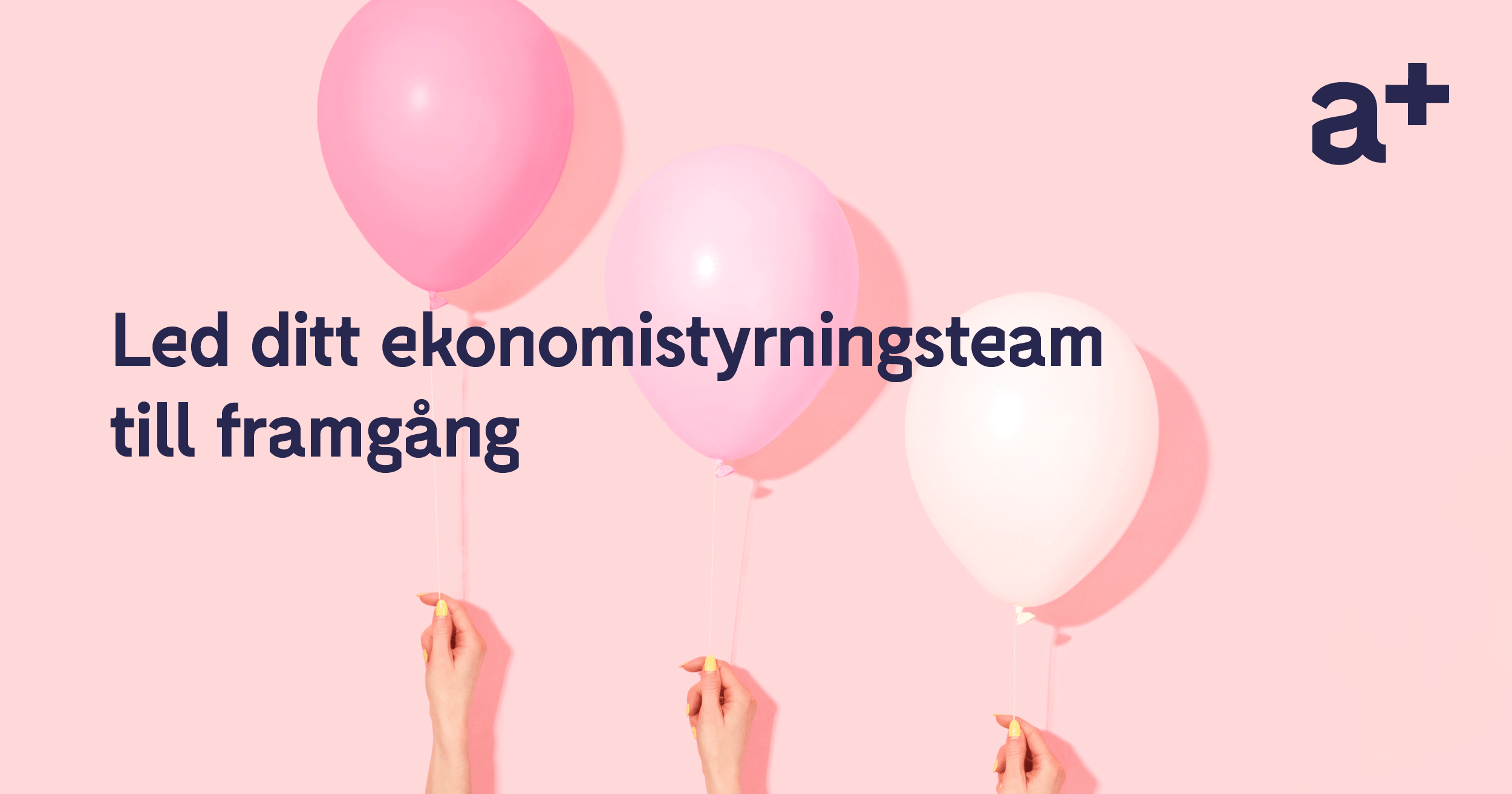 SOME_led_ditt_ekonomistyrningsteam_till_framgang_0719-min